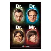 Big Bang Theory Affisch Dr Mr A702