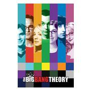 big-bang-theory-affisch-signals-1