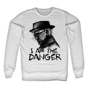 breaking-bad-troja-i-am-the-danger-1