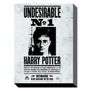 harry-potter-canvastryck-undesirable-no1-1
