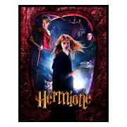 harry-potter-inramad-bild-hermione-1