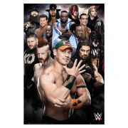 wwe-affisch-superstars-234-1