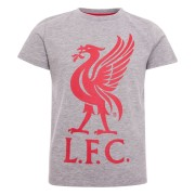 liverpool-t-shirt-liverbird-junior-gra-1