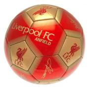 liverpool-football-signature-158246-1
