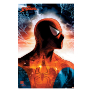 spider-man-affisch-protector-of-the-city-66-1