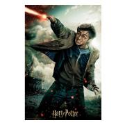 harry-potter-3d-pussel-harry-1