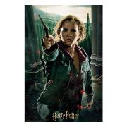 harry-potter-3d-pussel-hermione-1