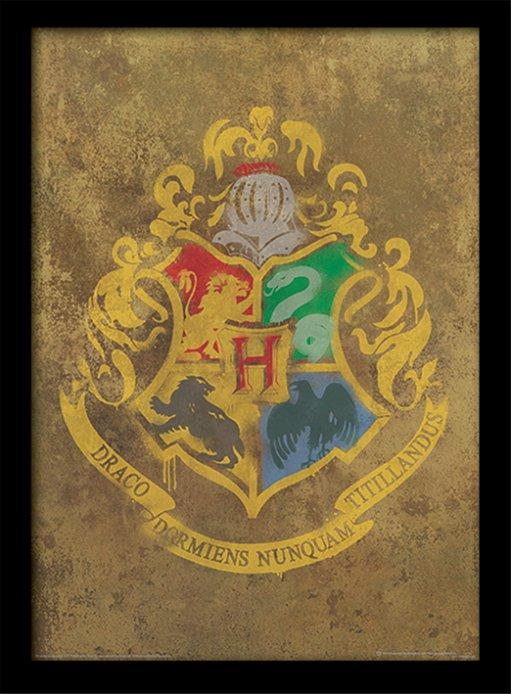 Harry Potter 40